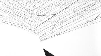 Sem título - vinil adesivo sobre madeira - 125x90 cm - 2013