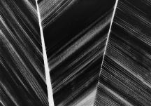 Sem título - nanquim s/ papel - 30x20cm - 2017