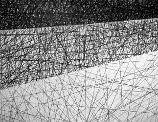 Sem título - Grafite s/ papel - 75 x 57cm - 2016